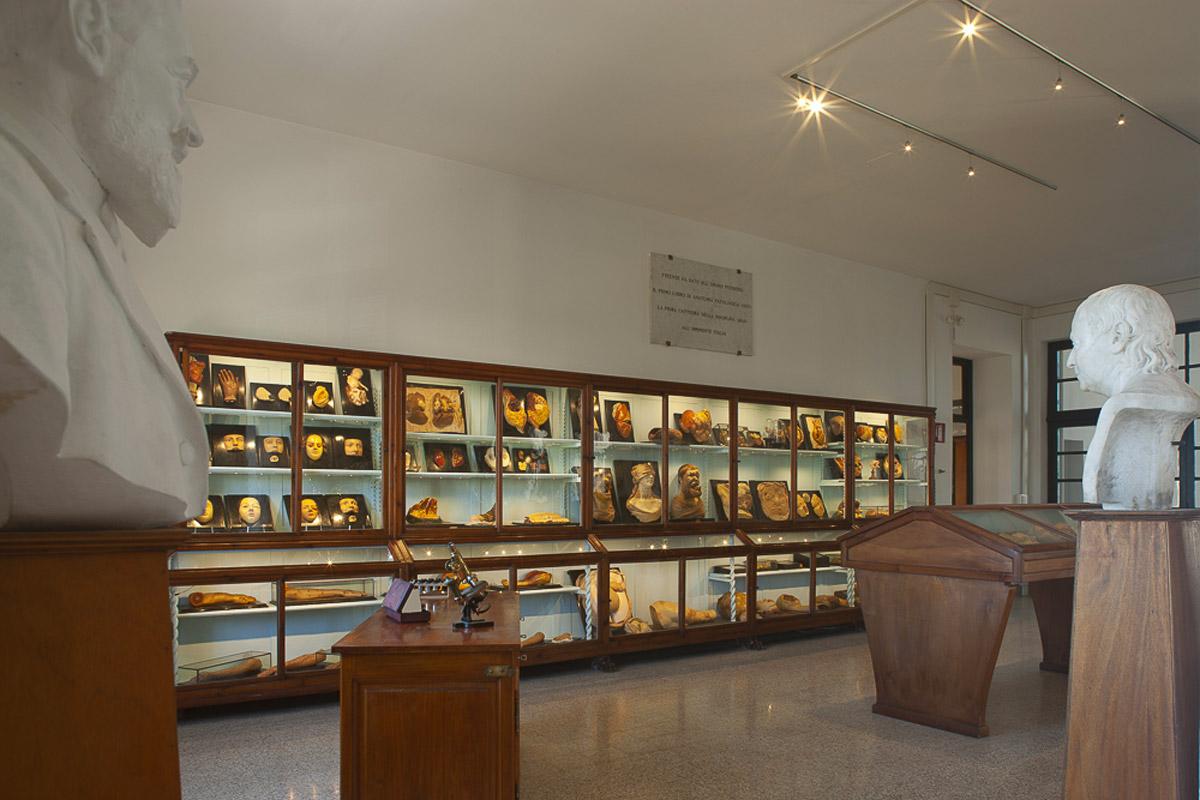 Museo di Anatomia Patologica di Firenze