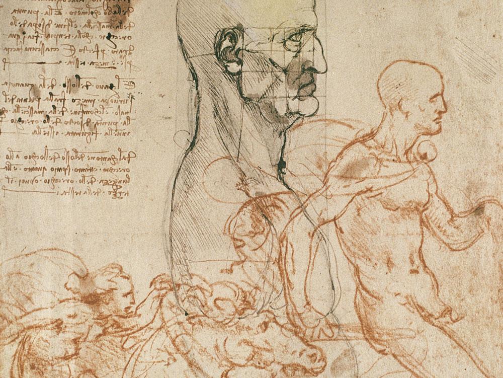 Leonardo, Torso virile di profilo con proporzioni della testa e schizzi di due cavalieri